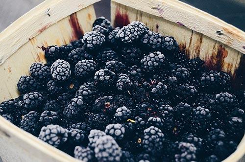 Eating Berries Enhances the Skin with its antioxidants -BlackBerries 500px
